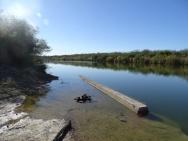 Rio Grande River at Salineno